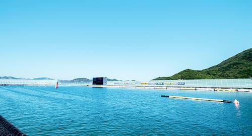 ボートレース鳴門の画像